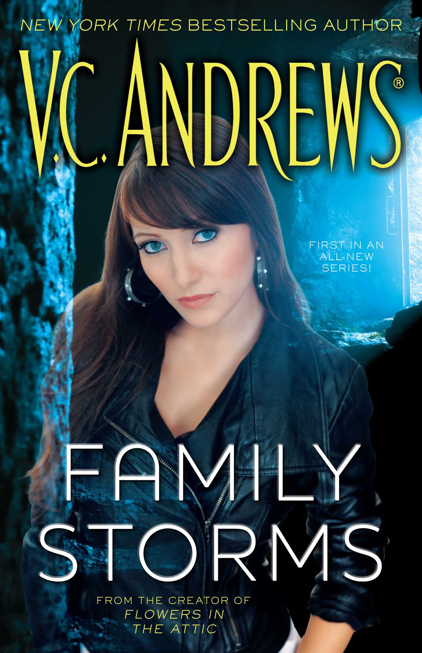 Family-storms-9781439181140_hr