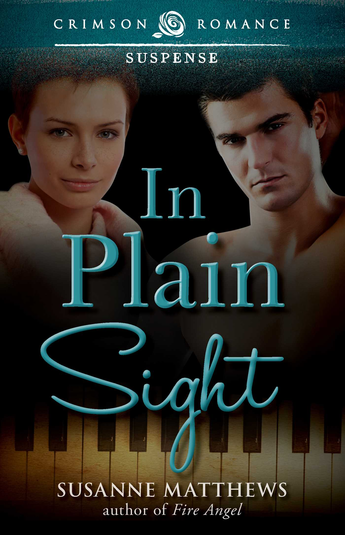 In plain sight 9781440571244 hr