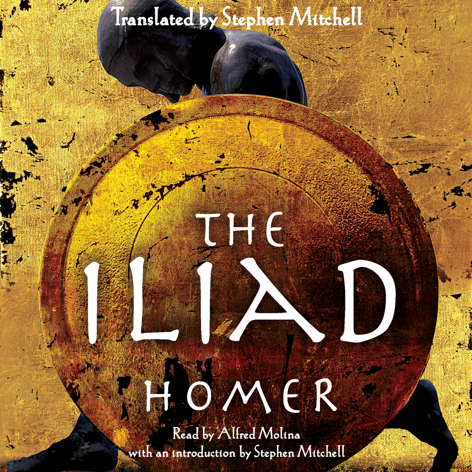 The iliad 9781442347328 hr