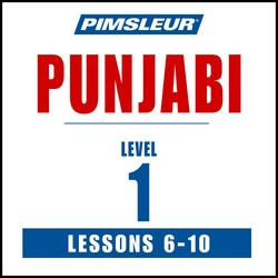 Punjabi Phase 1, Unit 06-10