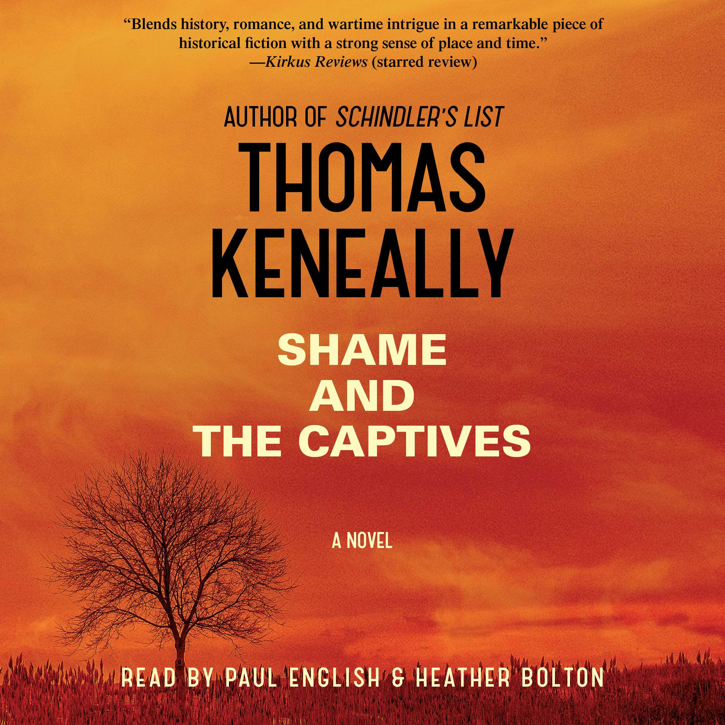 Shame and the captives 9781442376564 hr