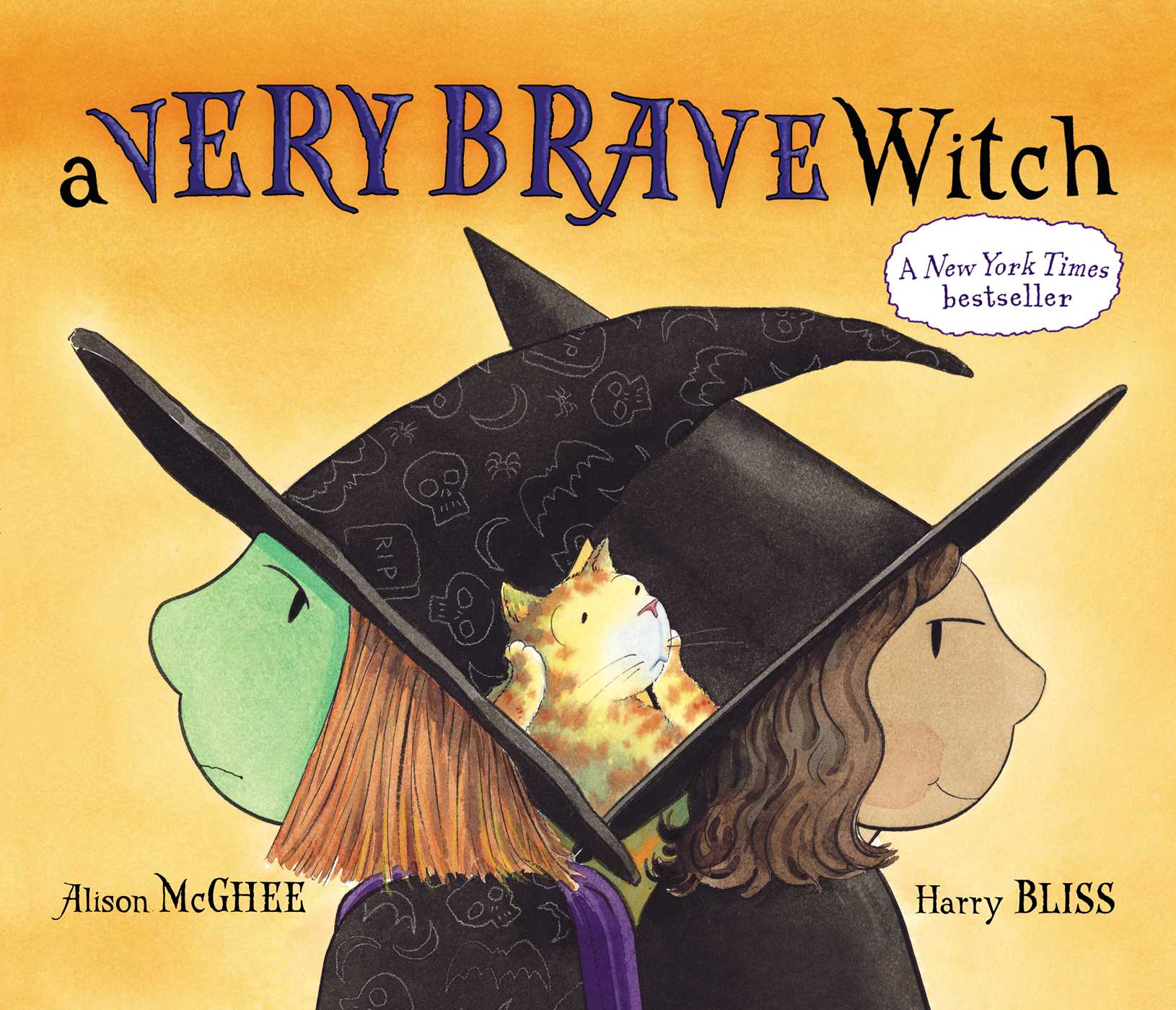 A very brave witch 9781442439269 hr