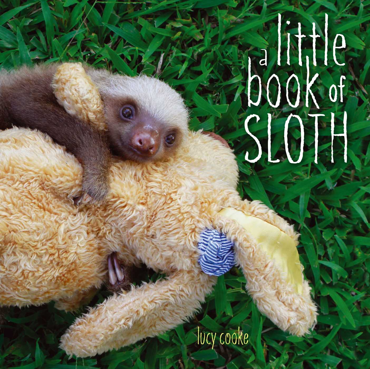 A little book of sloth 9781442445581 hr