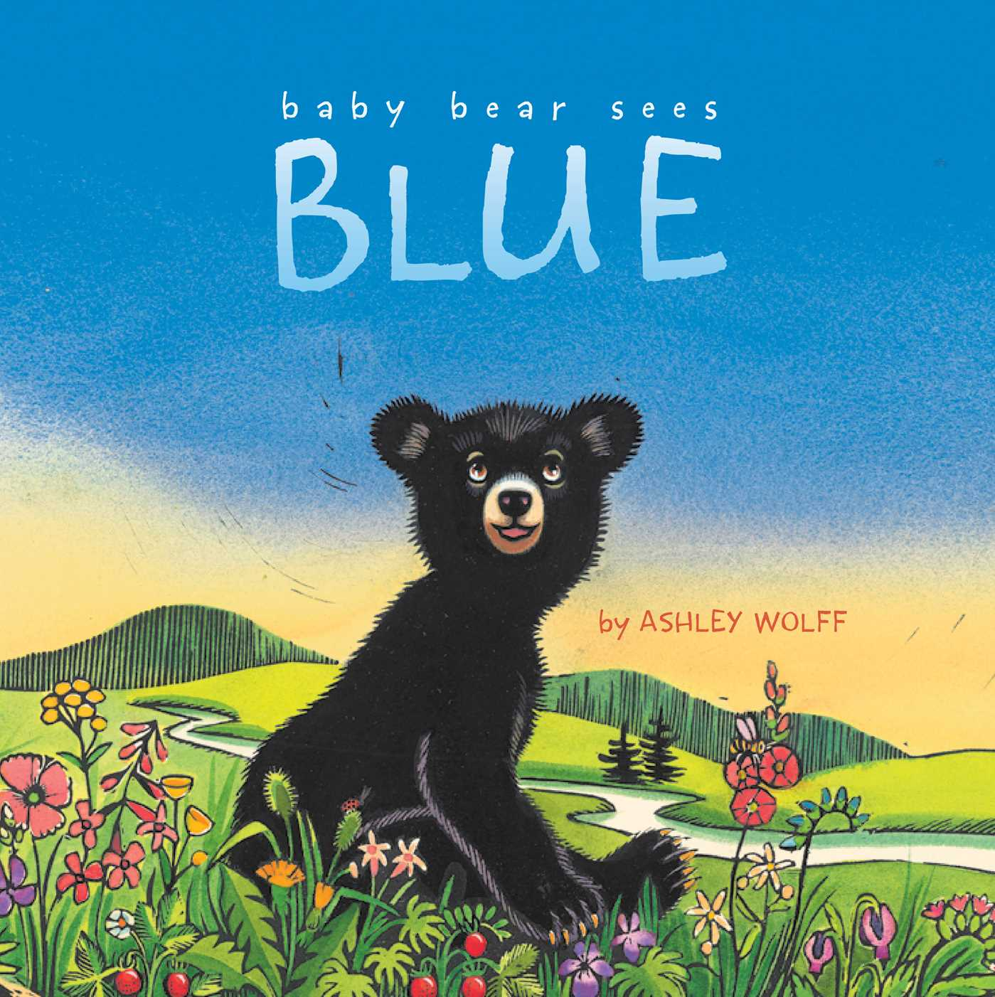 Baby bear sees blue 9781442449893 hr