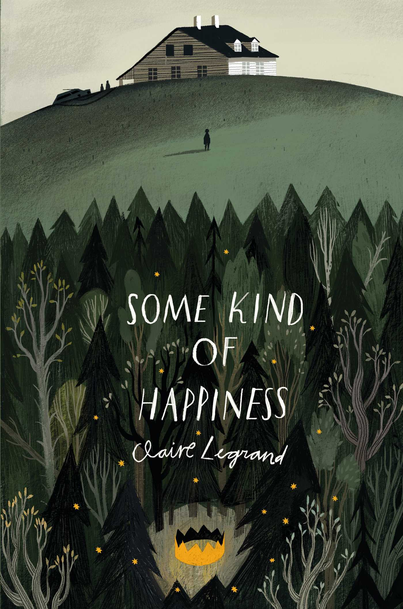 Some Kind Of Happiness 9781442466012 Hr