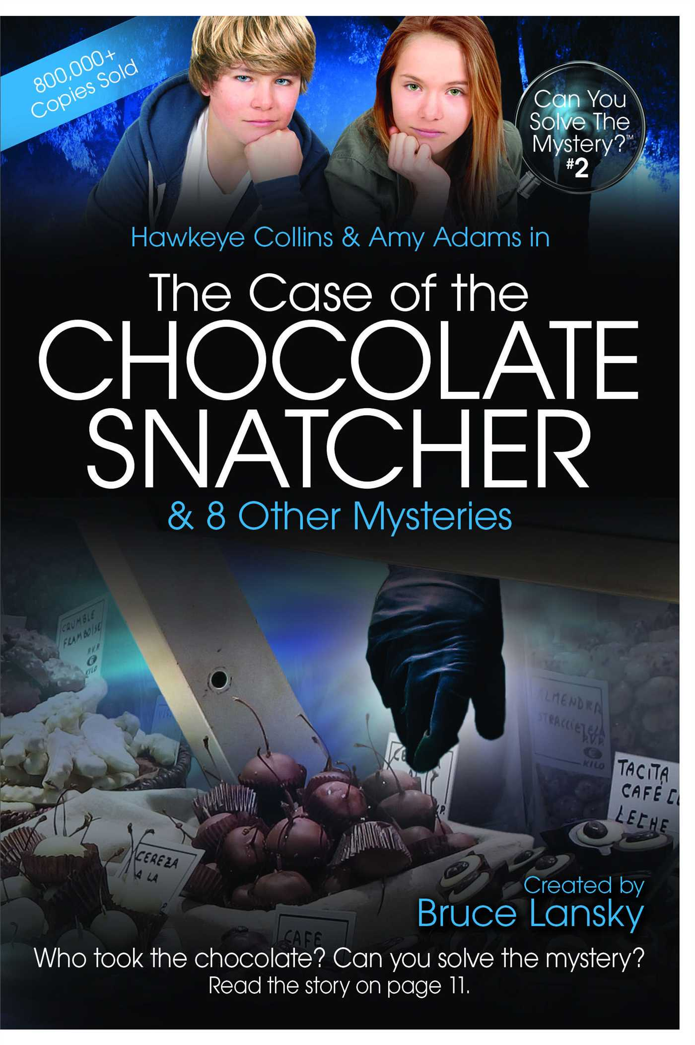 The-case-of-the-chocolate-snatcher-9781442469006_hr