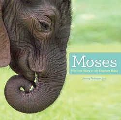 Moses-9781442496040