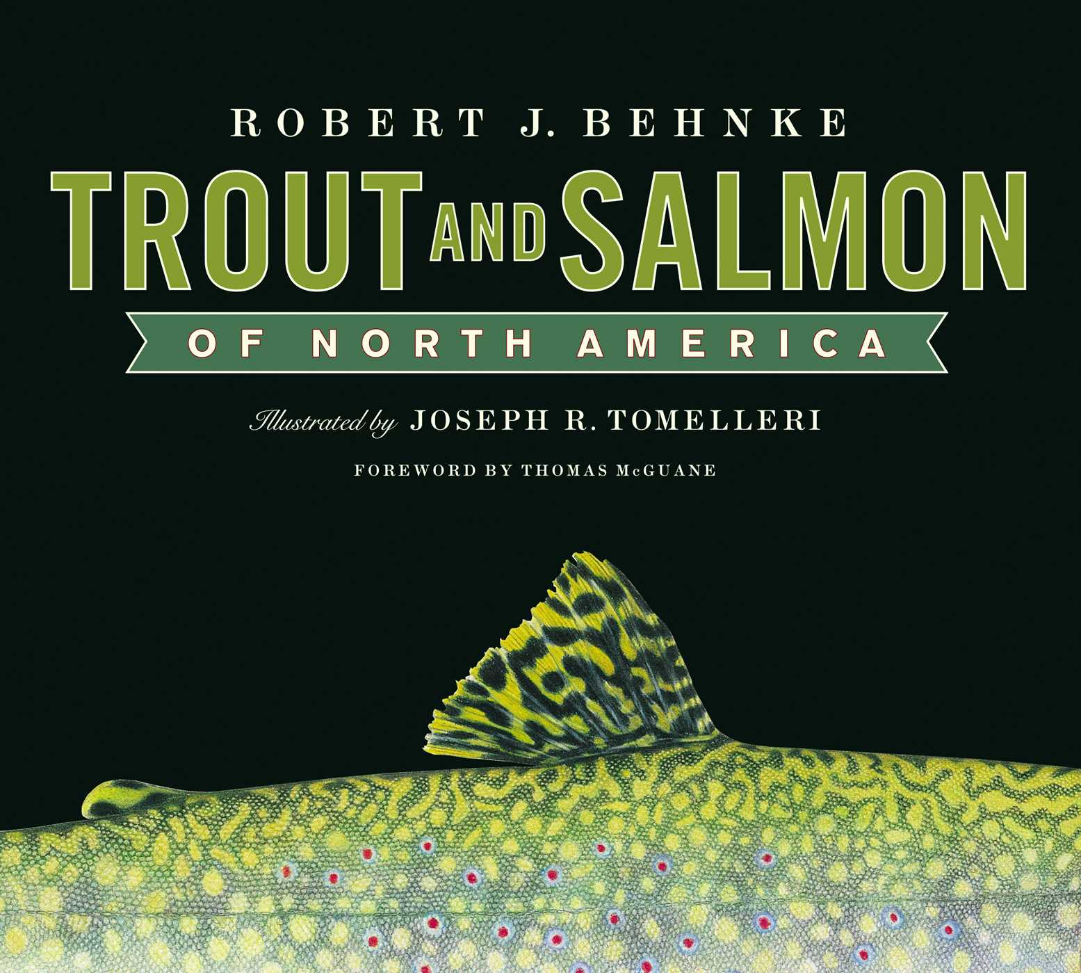 Trout and salmon of north america 9781451603552 hr