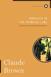 Manchild in the promised land 9781451626674