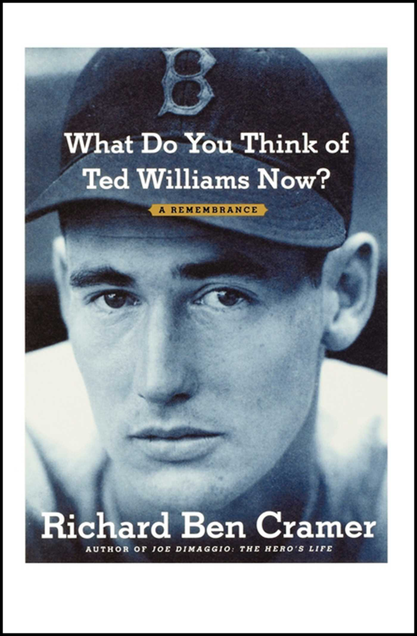 What do you think of ted williams now 9781451643404 hr