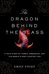 The dragon behind the glass 9781451678949