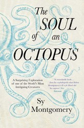The Soul of an Octopus