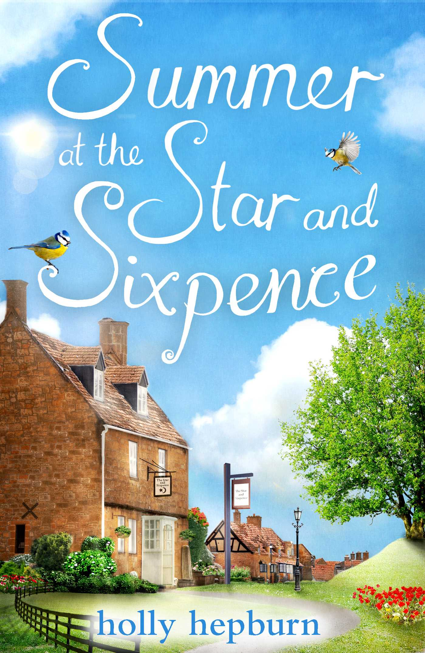 Summer at the star and sixpence 9781471150067 hr