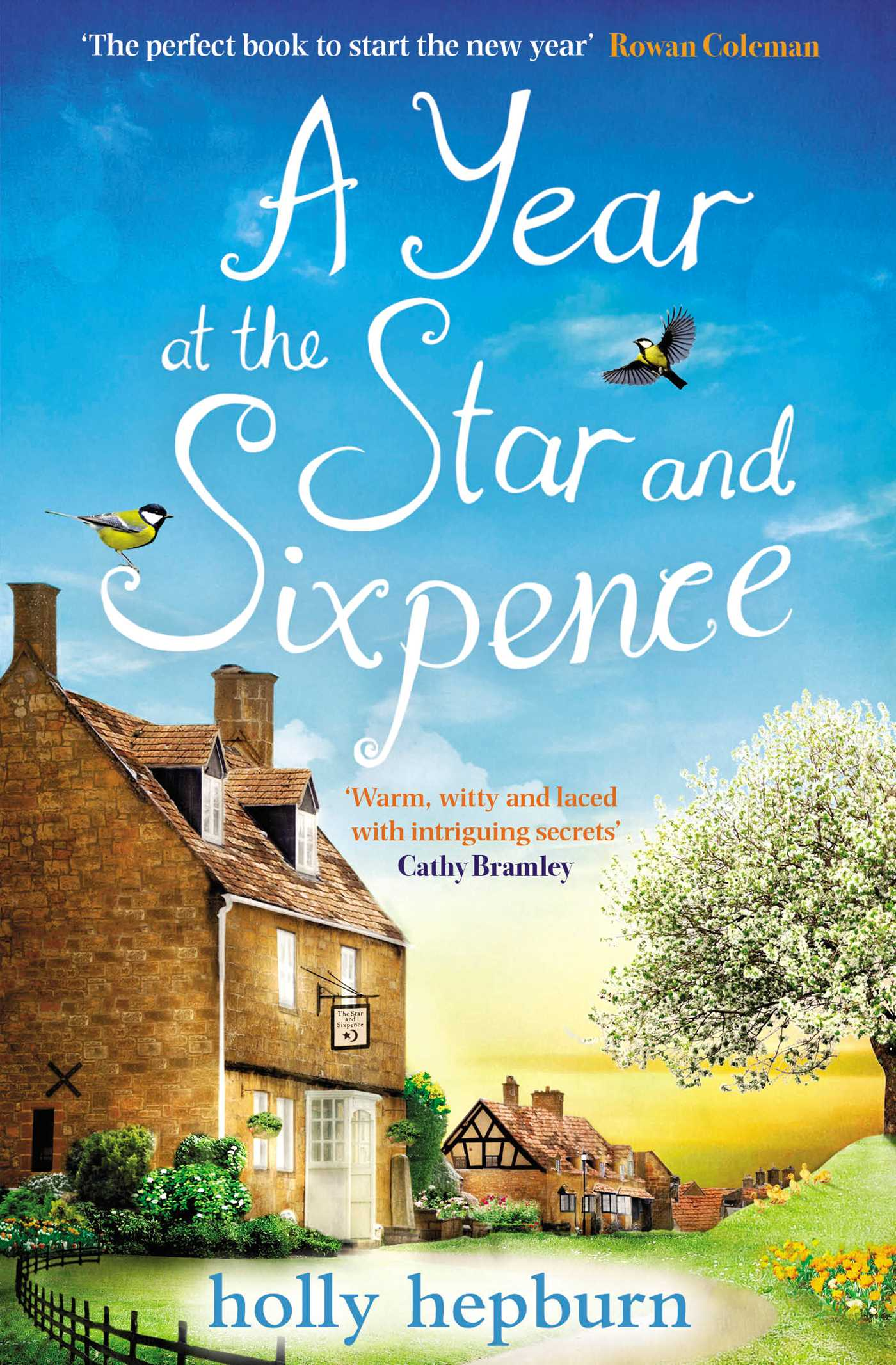 A year at the star and sixpence 9781471163142 hr