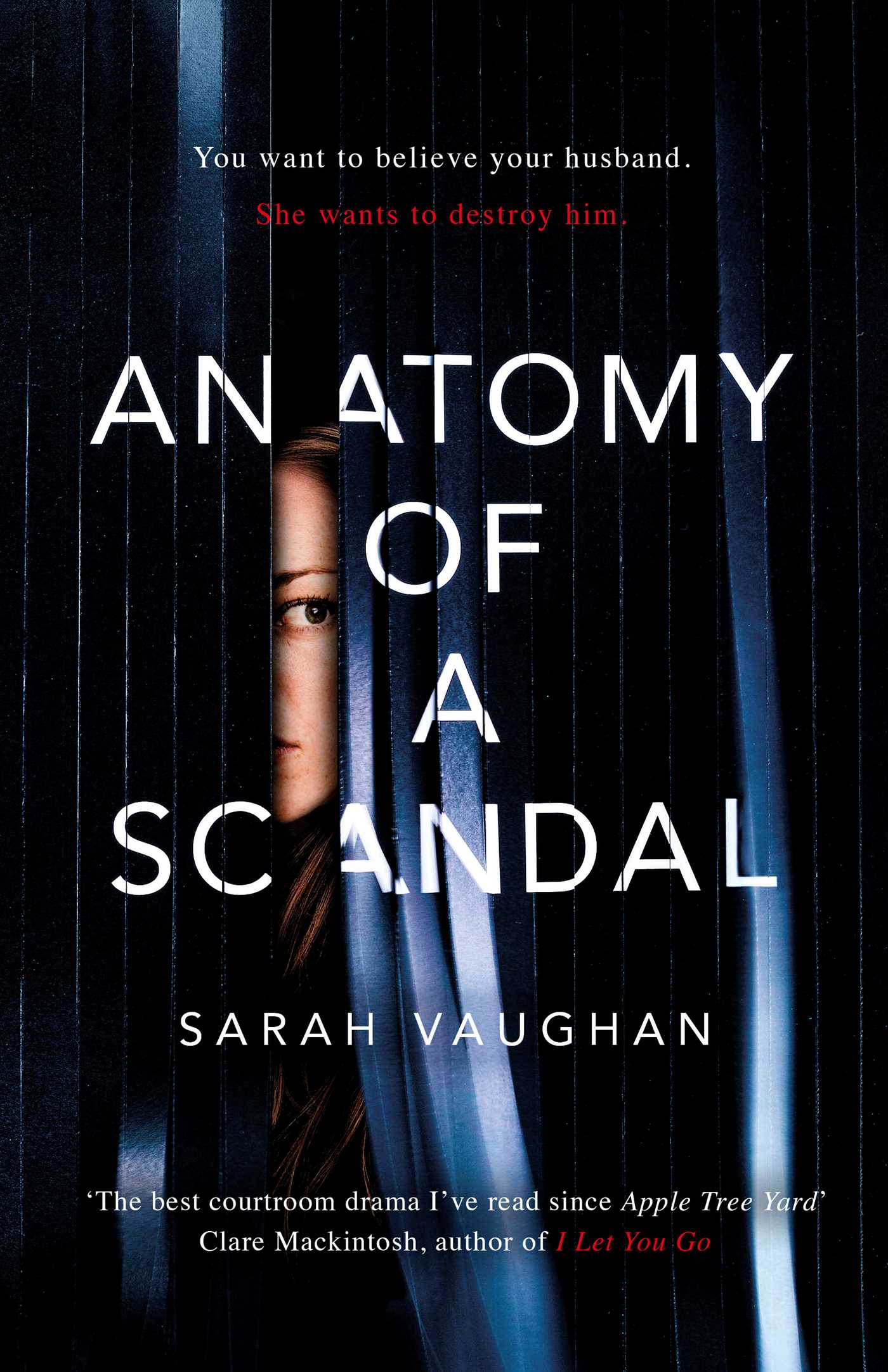 Anatomy of a Scandal | Book by Sarah Vaughan | Official Publisher ...