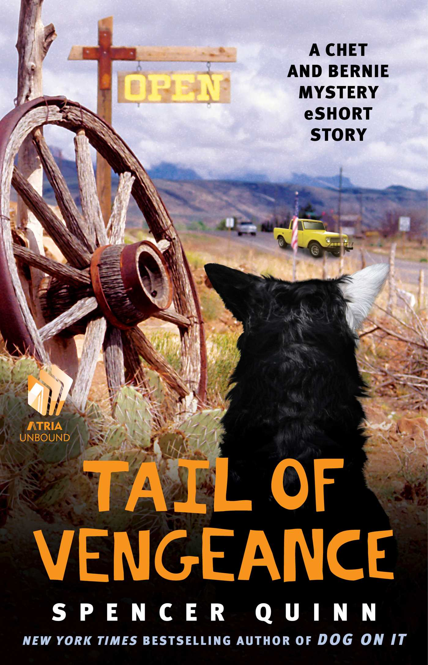 Tail of vengeance 9781476703633 hr