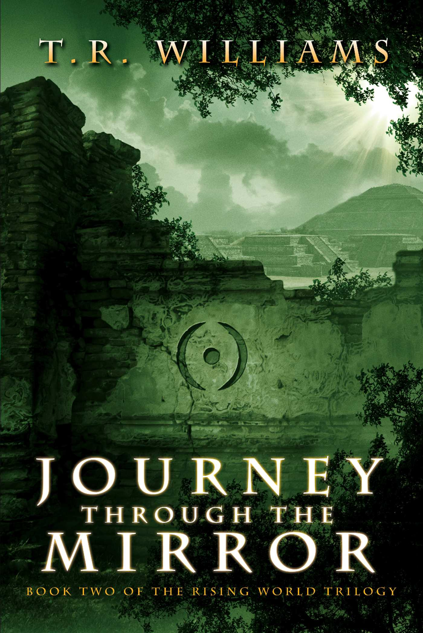 Journey through the mirror ebook by t r williams for Mirror books