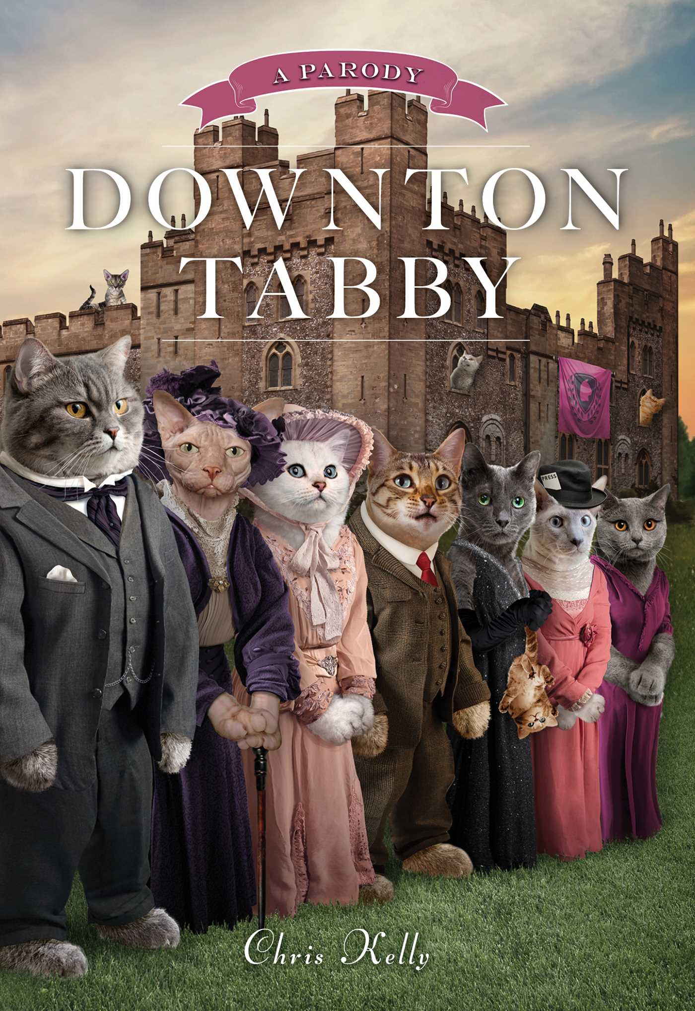 Downton tabby 9781476765945 hr