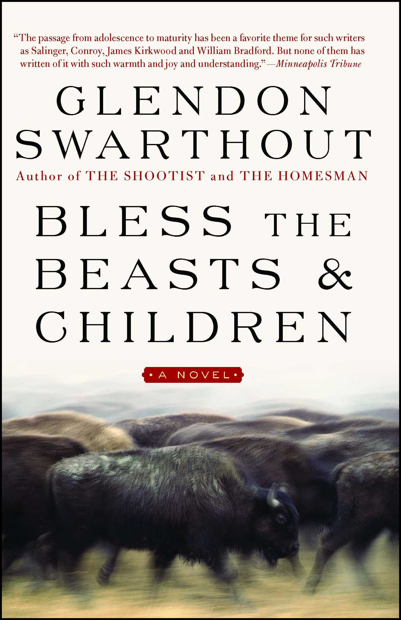 Bless-the-beasts-children-9781476766799_hr