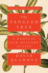 The Tangled Tree