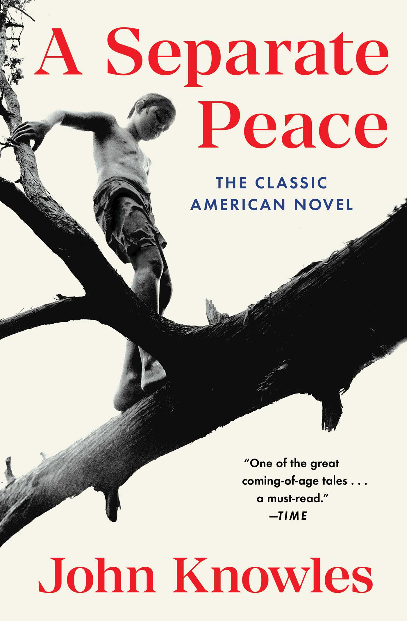 an essay on the novel a separate peace by john knowles