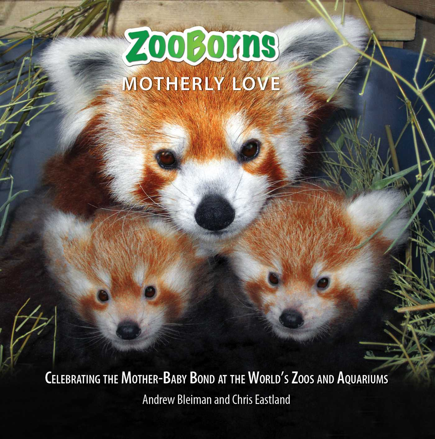 Zooborns motherly love 9781476791968 hr