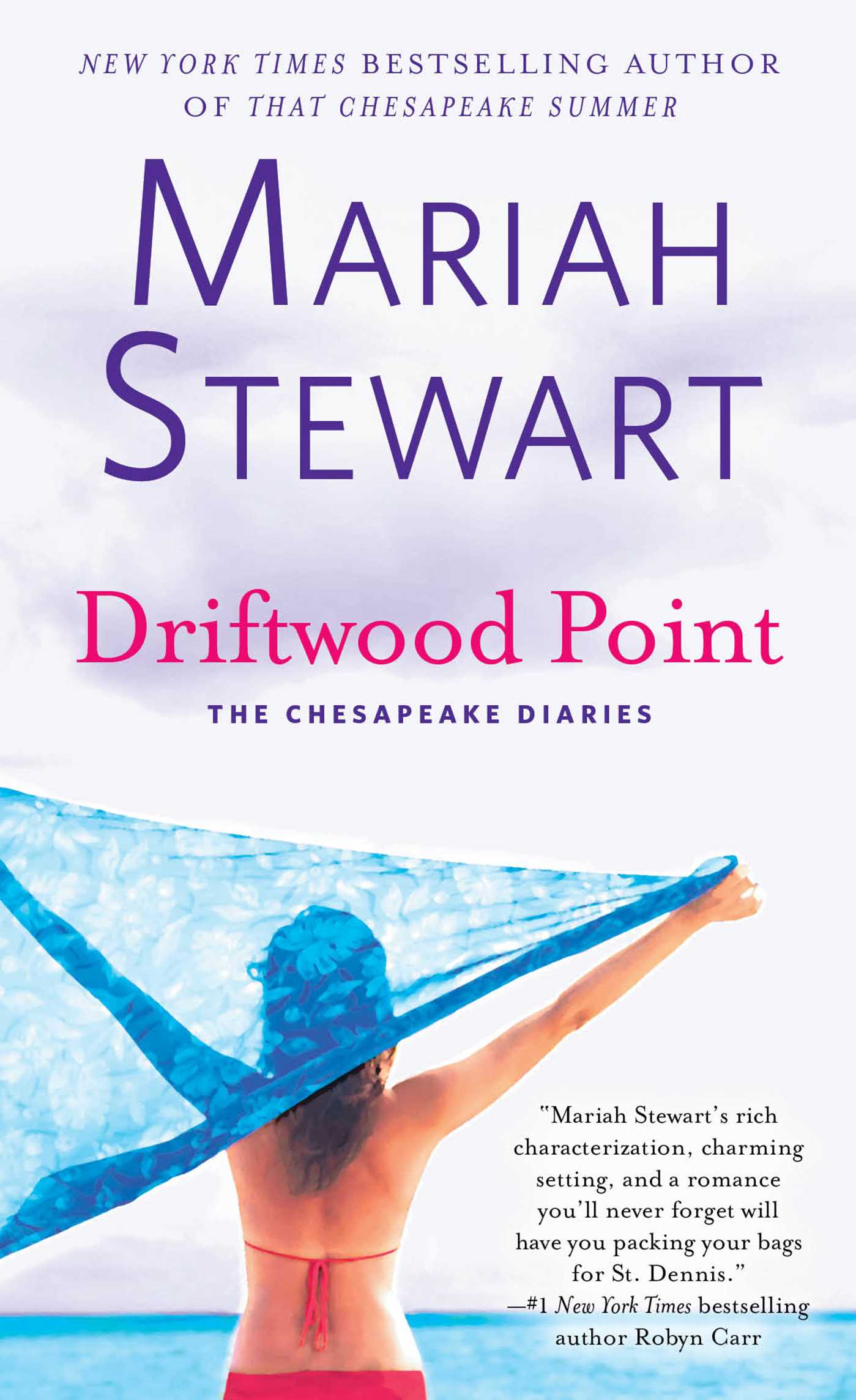Driftwood point 9781476792590 hr
