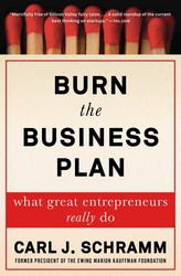 Burn the Business Plan