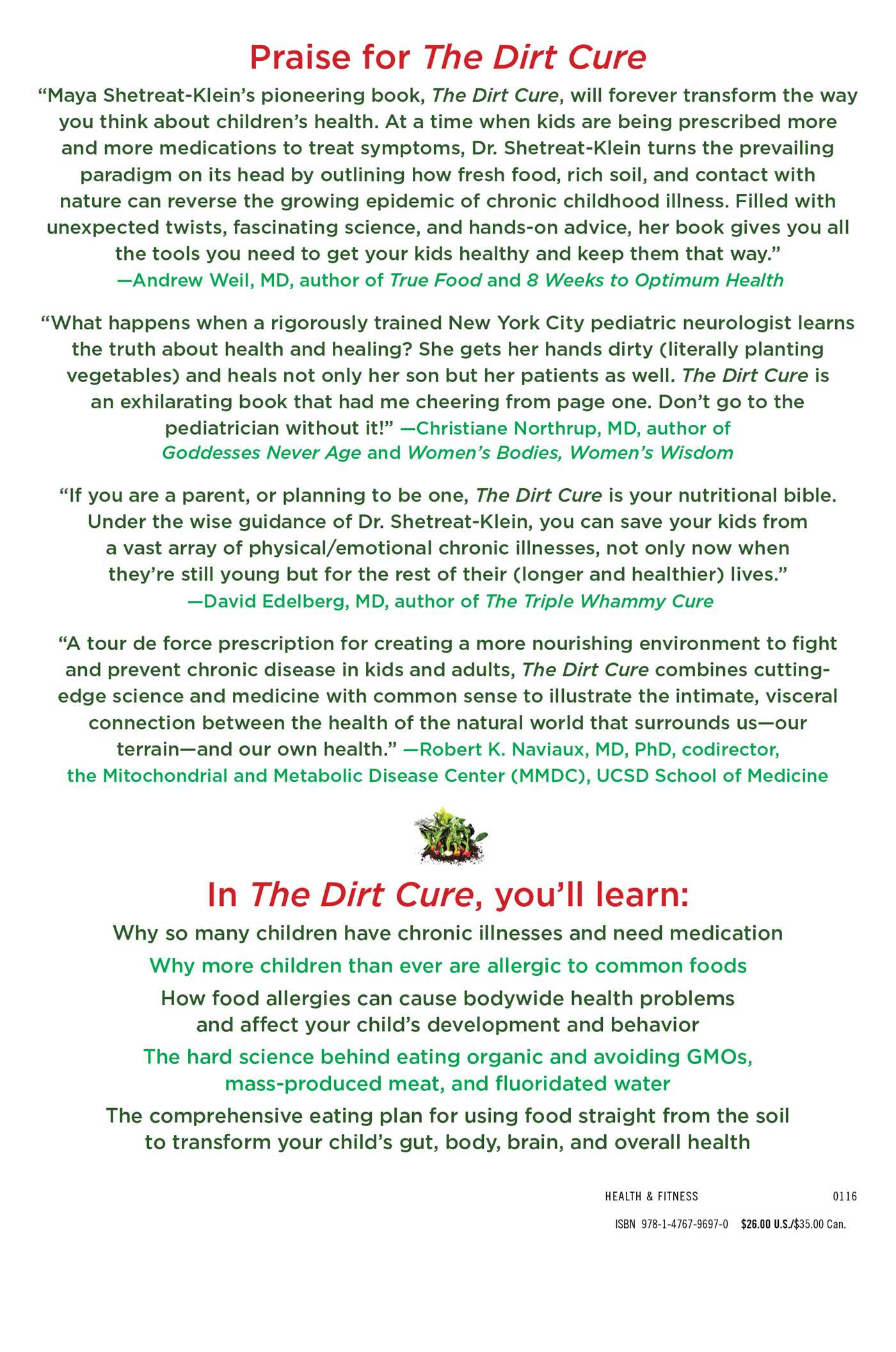 The dirt cure 9781476796970 hr back