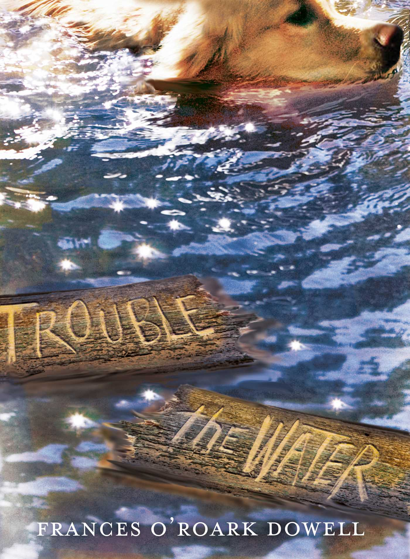 Trouble the water 9781481424646 hr