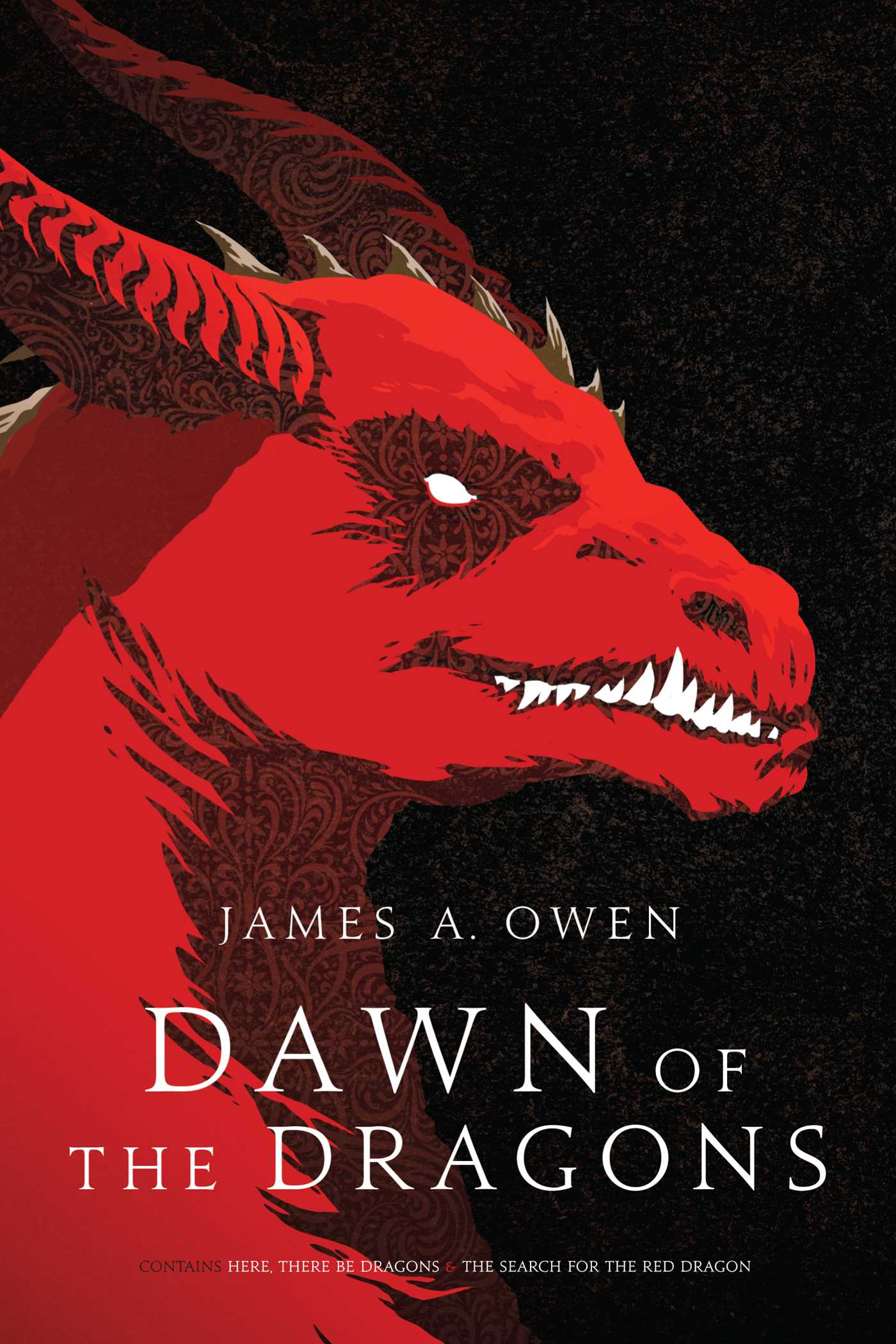 Dawn of the dragons 9781481429962 hr