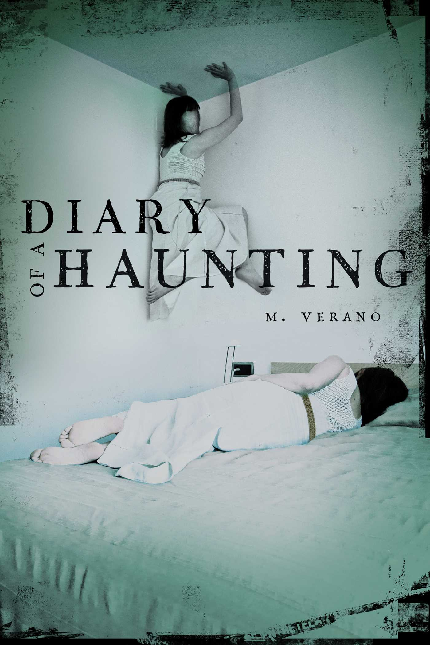 Diary of a haunting 9781481430692 hr