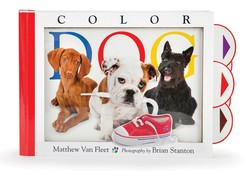 Color Dog by Matthew Van Fleet