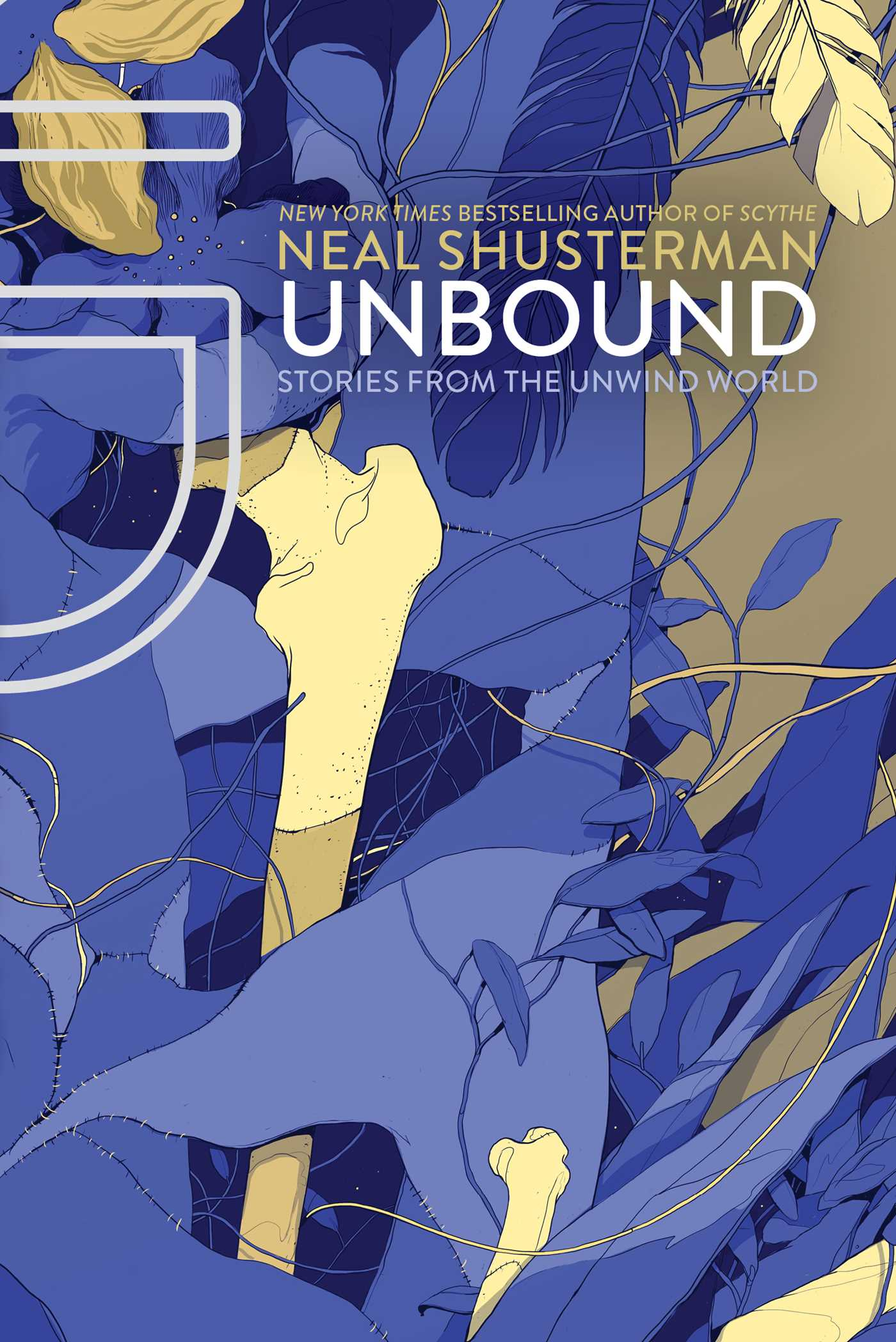 Image result for Unbound by neal shusterman