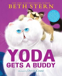 Yoda Gets a Buddy by Beth Stern
