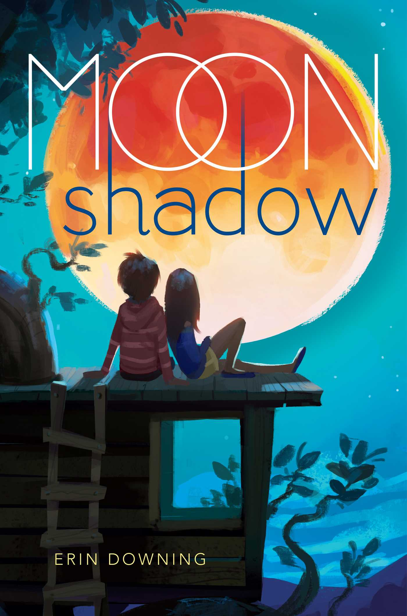 Moon Shadow Book By Erin Downing Official Publisher