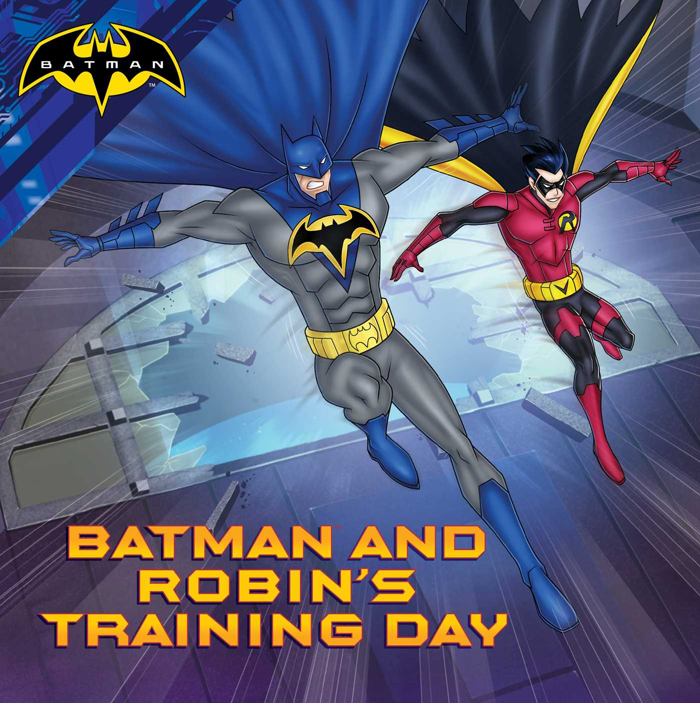 Batman and robins training day 9781481496308 hr