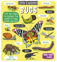 Little Explorers: Bugs