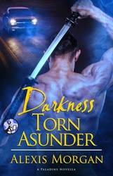 Darkness Torn Asunder book cover