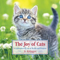The Joy of Cats