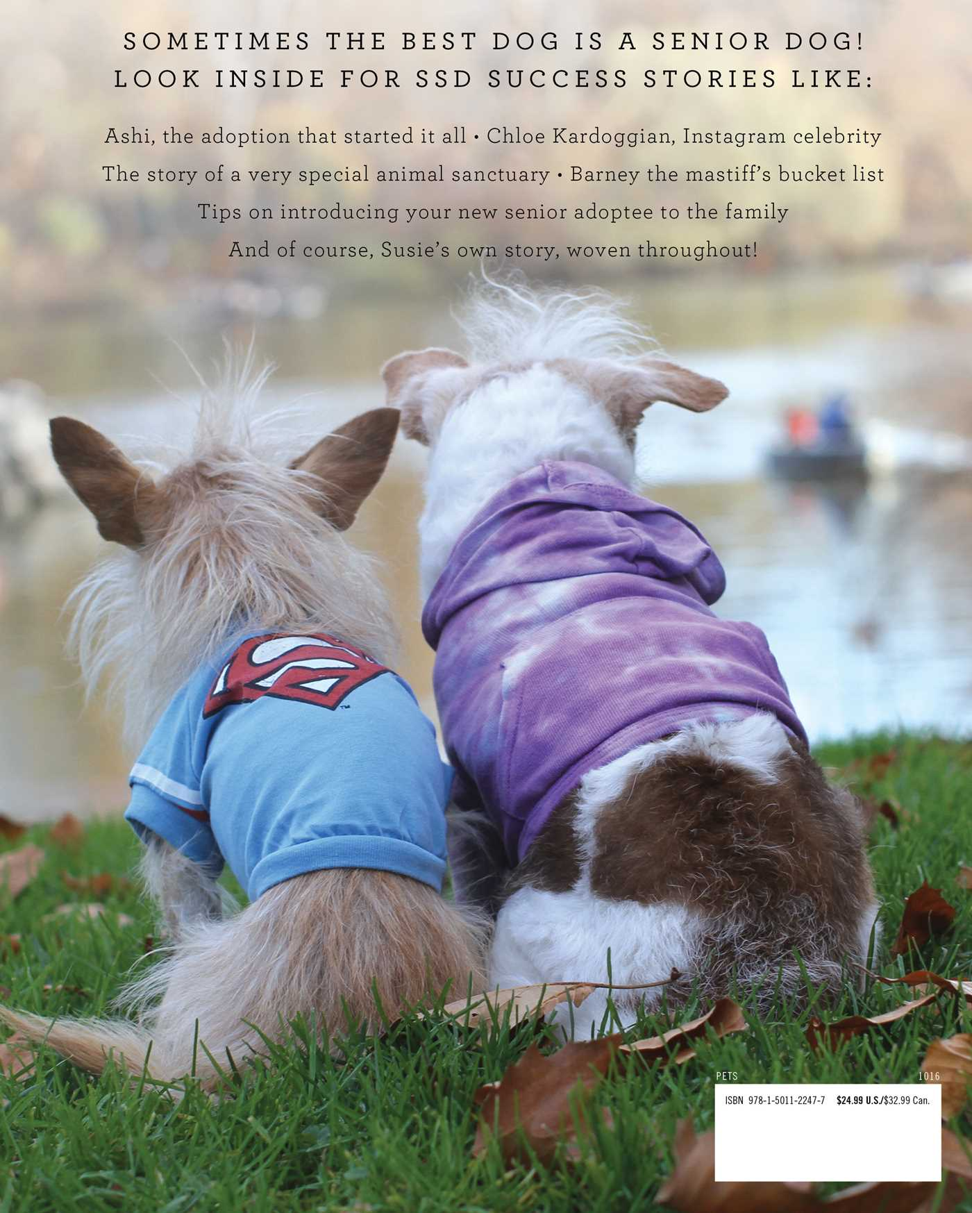 Susies senior dogs book by erin stanton official publisher susies senior dogs 9781501122477 hr back fandeluxe PDF