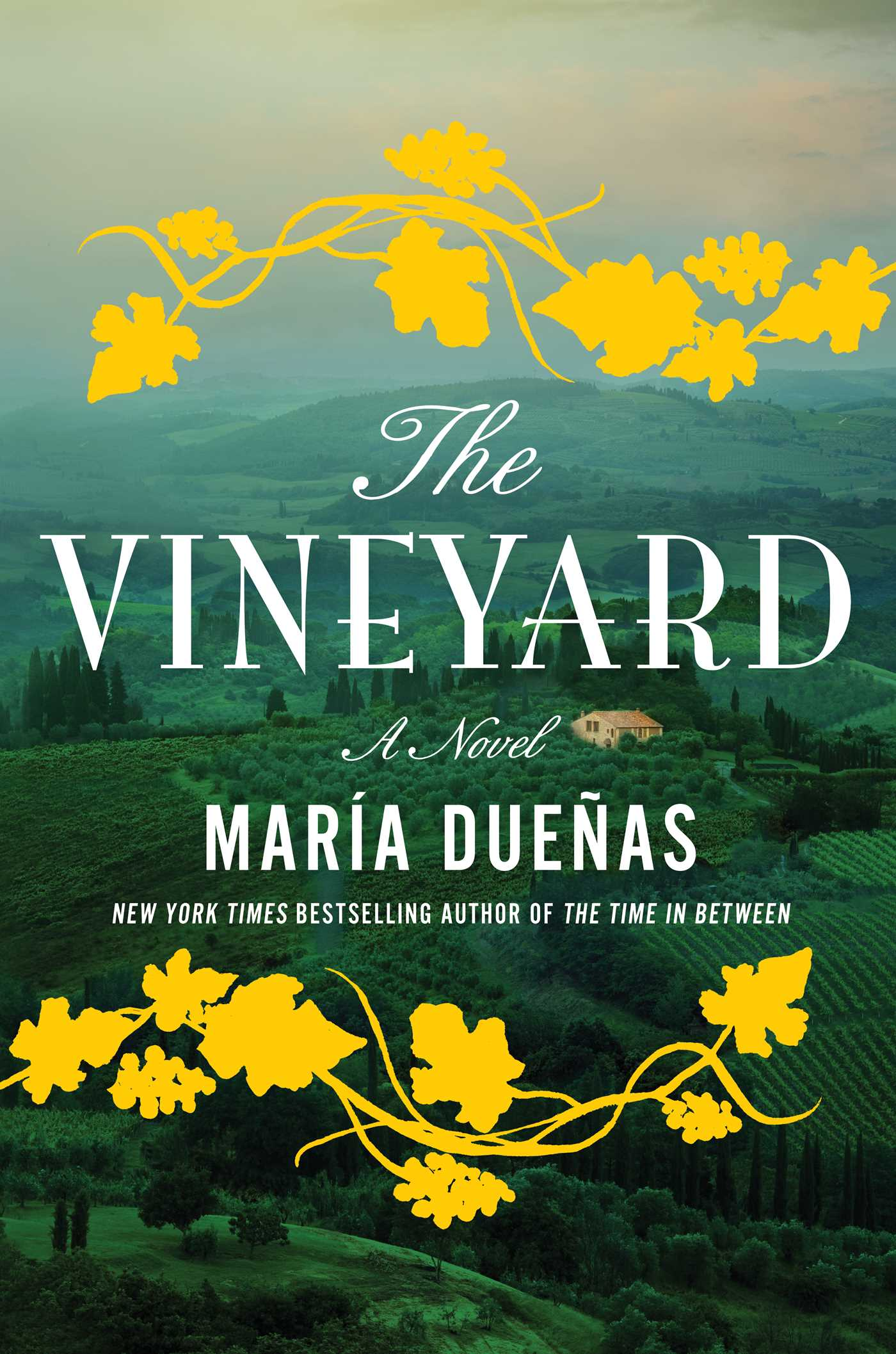 The vineyard 9781501124532 hr