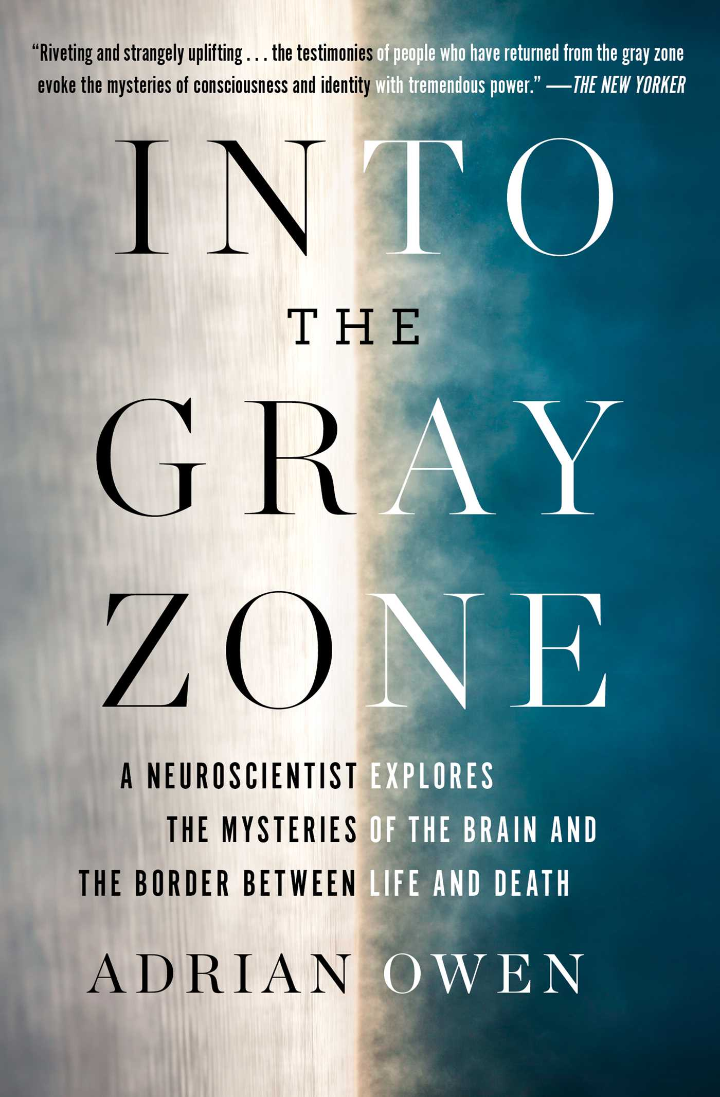 Into the gray zone 9781501135224 hr