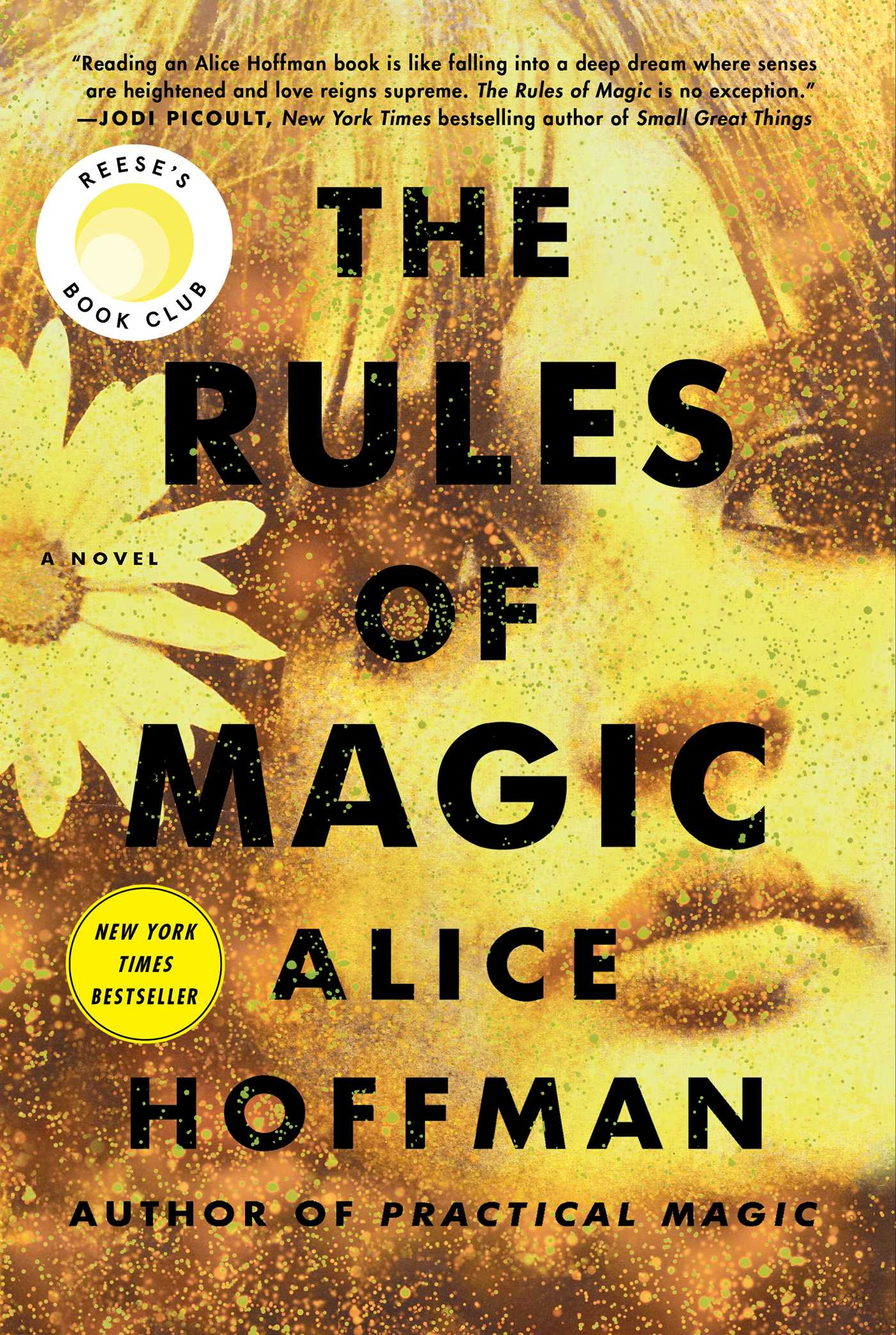 The rules of magic 9781501137471 hr