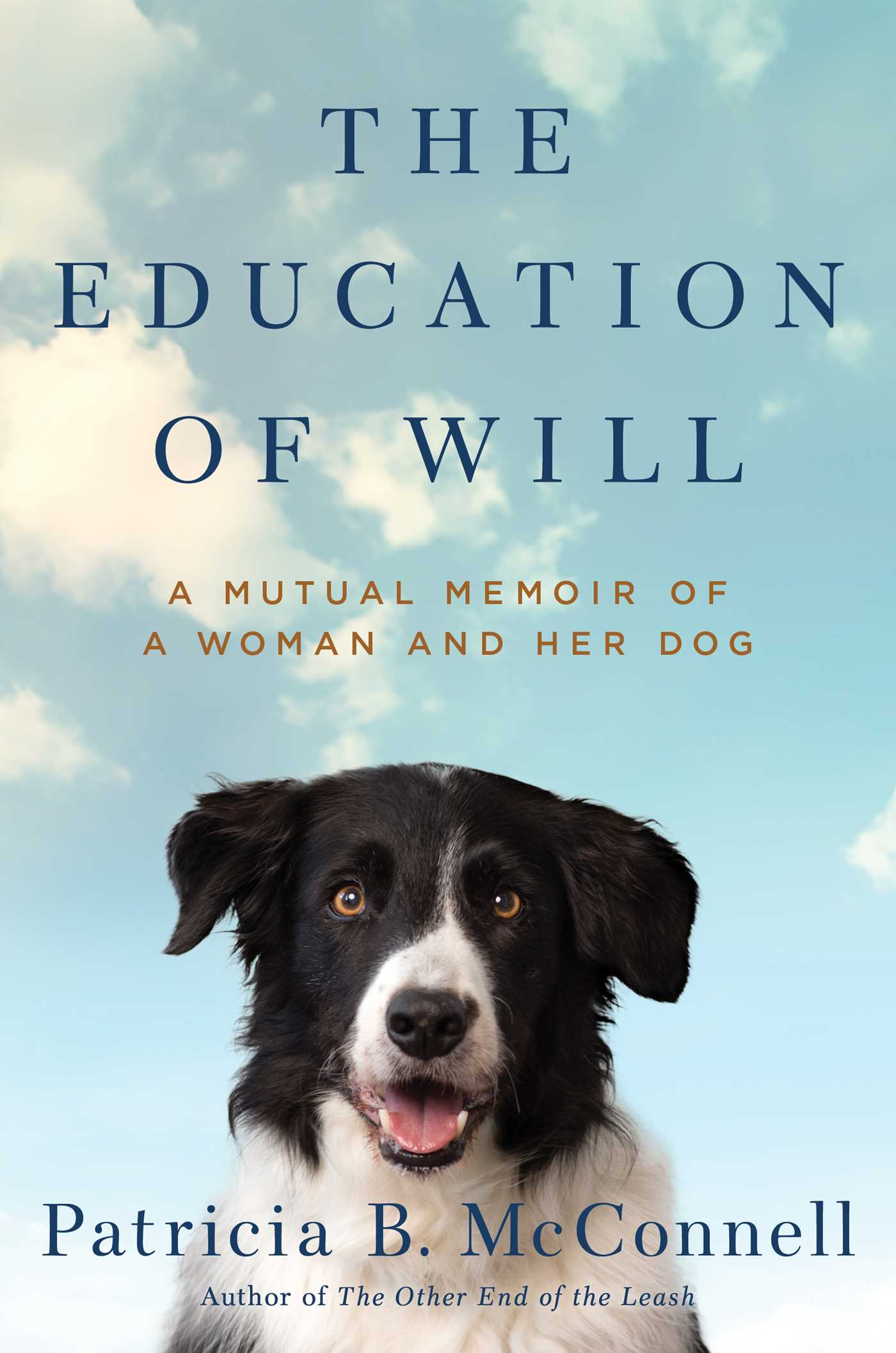 The education of will 9781501150159 hr