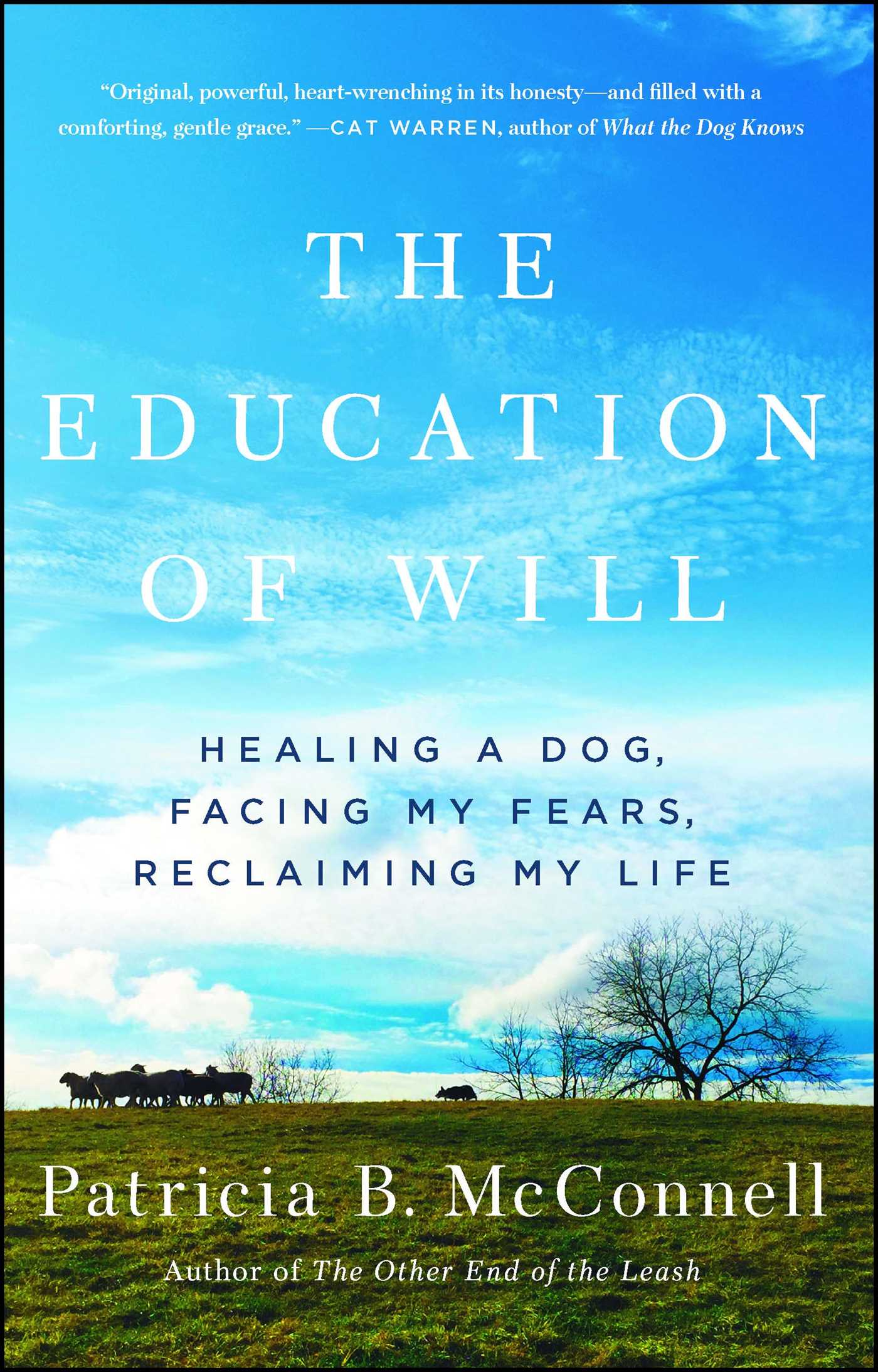 The education of will 9781501150173 hr