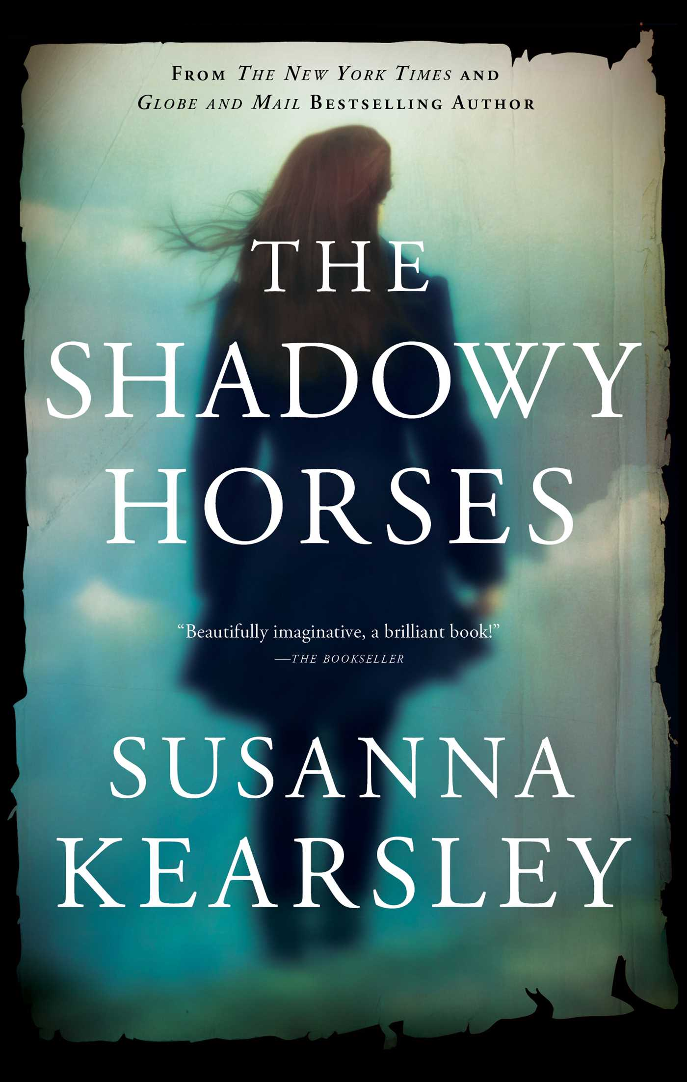 The shadowy horses 9781501184765 hr