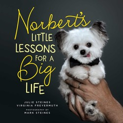 Norbert's Little Lessons for a Big Life book cover