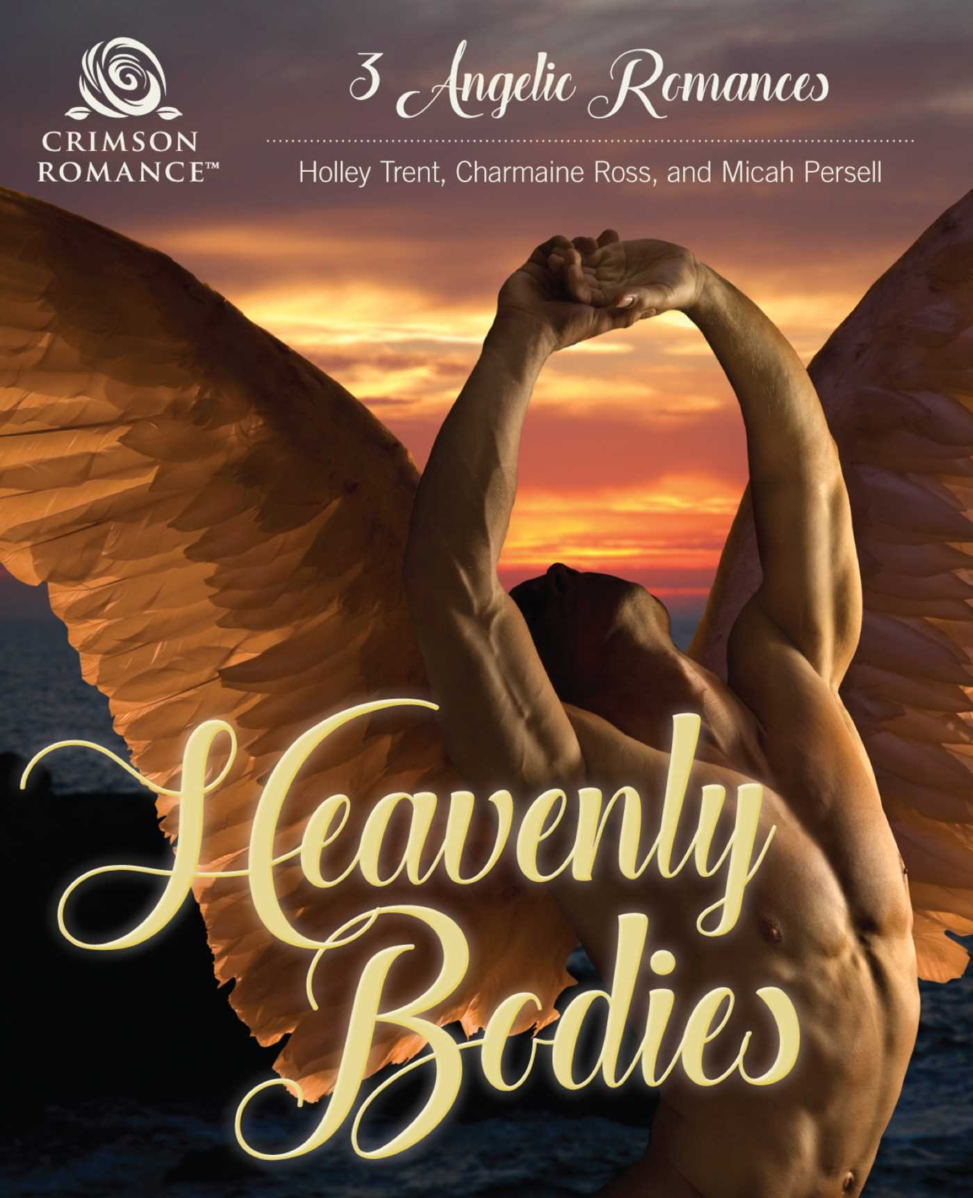 Heavenly bodies 9781507200476 hr