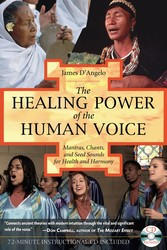 The healing power of the human voice 9781594770500